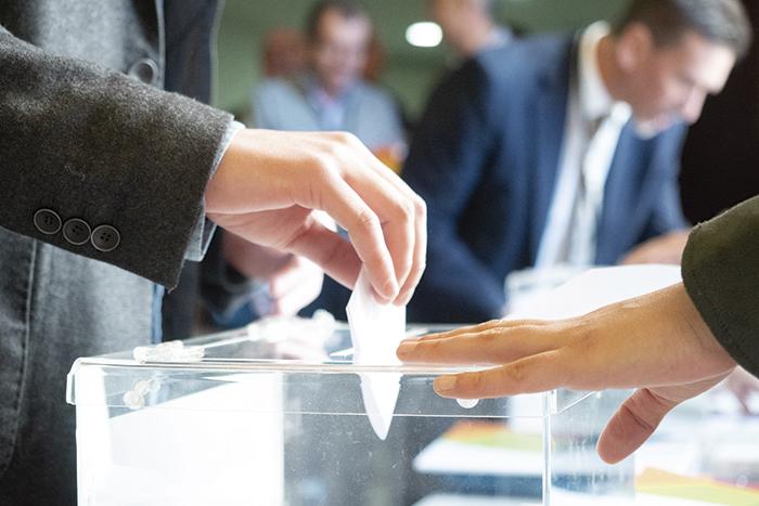 Votación Asamblea GSD